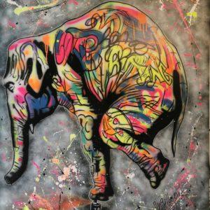 Elephant par Cyrille DUMONT